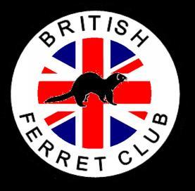 British Ferret Club